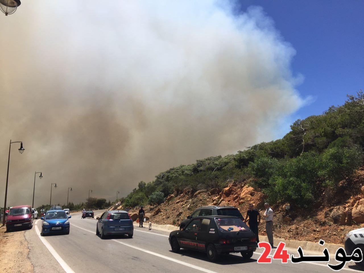 مندوبية المياه والغابات: حريق طنجة أتى على 215 هكتارا