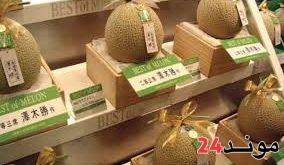 اليابان: بيع شمامتين بسعر يناهز 30 ألف دولار