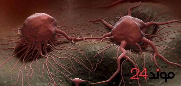 بالصدفة علماء بريطانيين يكتشفون طريقة للقضاء على معظم أنواع السرطان