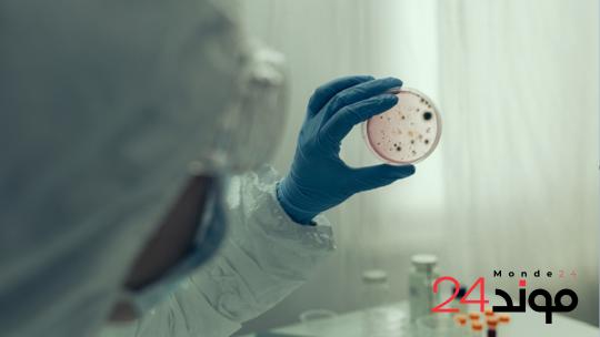 دراسة: خبراء ايطاليين يكشفون بأن تأثيرات فيروس كورونا أسوأ مما كان يعتقد سابقا
